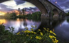 Aperçu fond d'écran Norvège, pont, rivière, arbres, fleurs jaunes, lumières, crépuscule