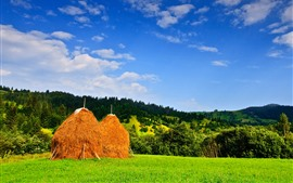 Preview wallpaper Romania, haystack, trees, field, hills, blue sky, clouds