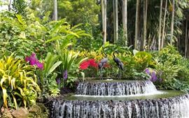 Singapur, parque, cascada, estatua de aves, árboles, hojas