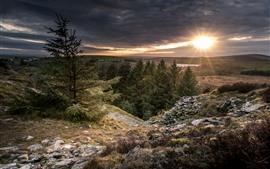 Vorschau des Hintergrundbilder Bäume, Berge, Sonnenuntergang, Sonnenstrahlen, Wolken, Dämmerung
