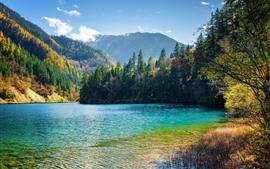 Красивая природа пейзаж, озеро, деревья, горы, джиужайгоу, Китай