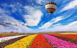 Campo de flores de colores, vuelo de globo aerostático en cielo, nubes