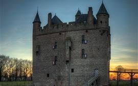 Preview wallpaper Doornenburg, Netherlands, castle, trees, dusk