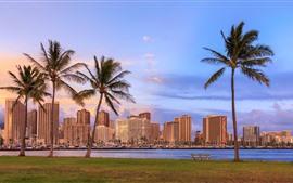 Aperçu fond d'écran Hawaii, palmiers, gratte-ciel, ville, baie, crépuscule