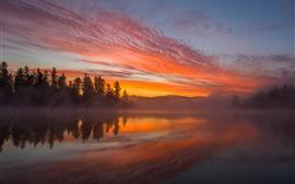 Озеро, деревья, туман, закат, туманные