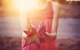 Folhas de bordo vermelhas, mãos menina, nebulosa