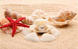 Preview wallpaper Seashell, starfish, beach, pearl