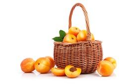 Pêssegos amarelos, frutas, cesta, fundo branco