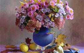 Flores Aster, rosa e roxo, vaso, maçãs, folhas de plátano