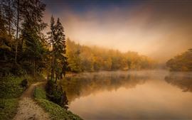 미리보기 배경 화면 가을, 안개, 나무, 강, 자연 풍경