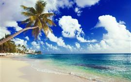 Vorschau des Hintergrundbilder Strand, Meer, Küste, Palmen, Häuser, Tropisch, Wolken