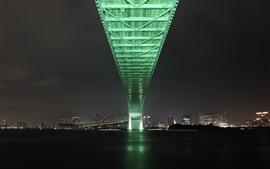 Aperçu fond d'écran Ville, nuit, pont, rivière, Tokyo, Japon