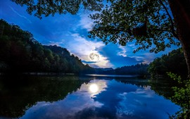 Preview wallpaper Germany, Mainz, trees, moon, lake, water reflection