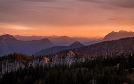 Aperçu fond d'écran Montagnes, forêt, arbres, crépuscule, automne