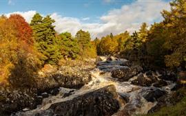 Aperçu fond d'écran Écosse, rivière, pierres, arbres, automne