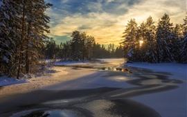 Suecia, Nieve, Árboles, Río, Invierno, Atardecer