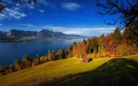 Aperçu fond d'écran Suisse, lac Thun, arbres, maison, automne