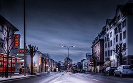 Preview wallpaper Switzerland, city, snow, street, houses, lights, evening
